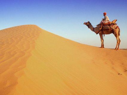 Tudo o que precisa de saber sobre a consulta do viajante