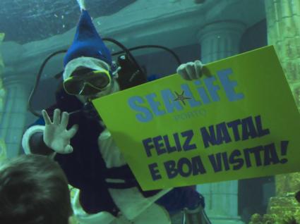 Pai Natal dos Oceanos chega ao Sea Life em dezembro