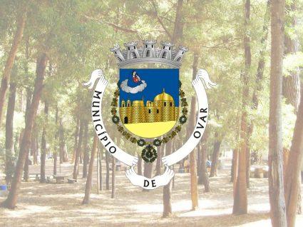 Câmara Municipal de Ovar está a recrutar assistentes operacionais
