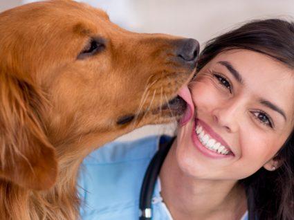 Curso de Auxiliar de Veterinária: faça da paixão a sua profissão