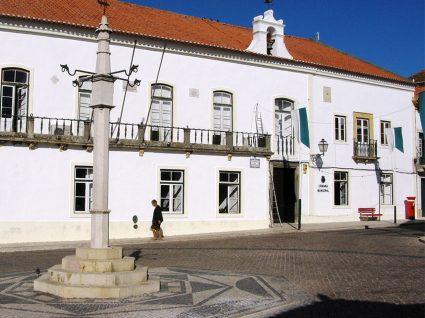 Câmara Municipal de Sardoal precisa de licenciados