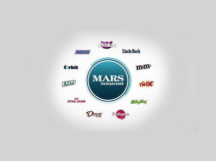Mars com oportunidades de estágios para licenciados