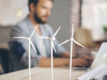Leilão da Deco: Energia Simples é a melhor