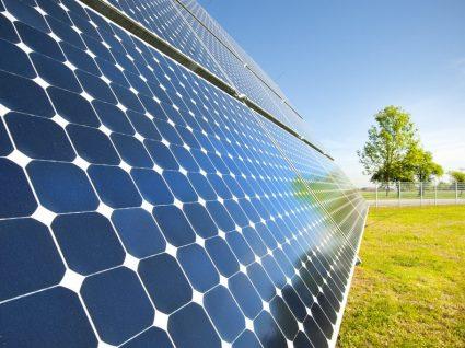 Energias renováveis: 6 fontes a conhecer