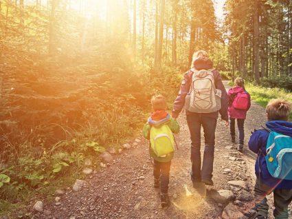 Escapadinha rural: destinos para estar em contato com a natureza