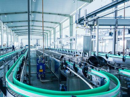 Empresa de Penamacor investe 2,5 ME e cria novos empregos