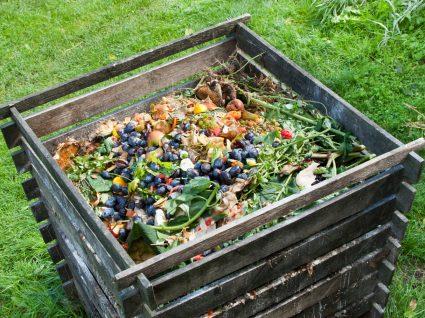 caixa de compostagem