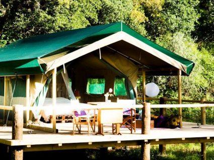 Há uma nova tenda glamping no Figueirinha Ecoturismo