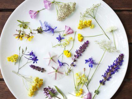 10 flores comestíveis para tornar os seus pratos ainda mais especiais