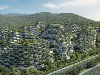 Esta cidade florestal na China quer travar a poluição