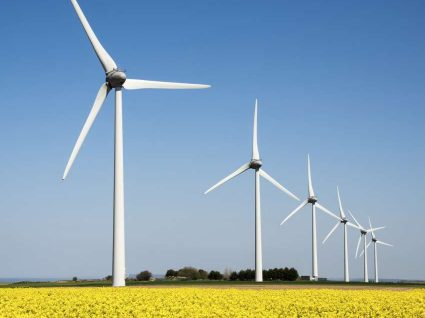 Governo quer dar 25 milhões a projetos de energias renováveis