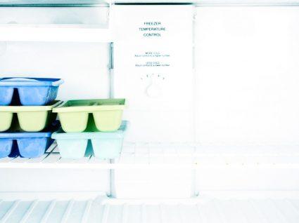 8 inteligentes usos não alimentares para o congelador