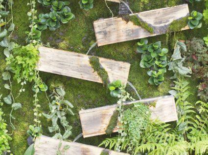 6 ideias para um jardim vertical simples mas criativo