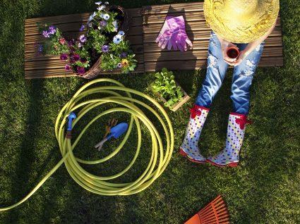 4 ideias para jardins incríveis