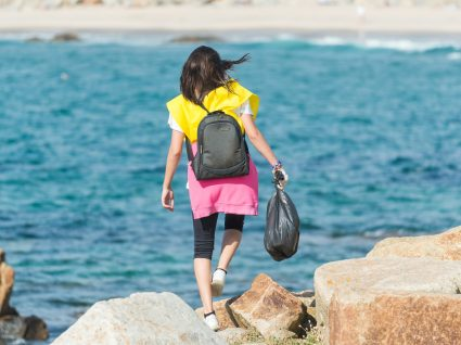 Sea Life limpa regressa à Praia do Castelo do Queijo