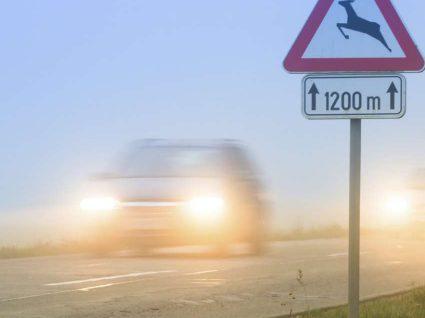 6 Dicas para quando for conduzir com nevoeiro