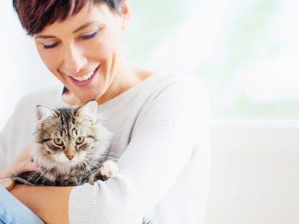 3 doenças transmitidas pelos gatos que deve conhecer