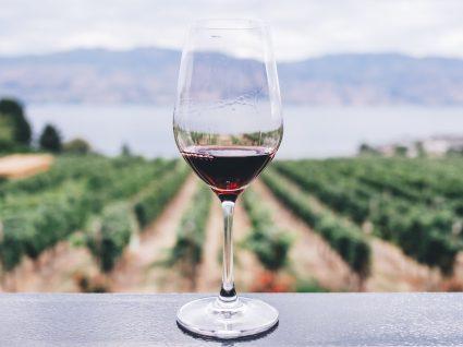 Estes são os vinhos portugueses que fazem sucesso no estrangeiro