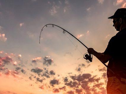 Licença de pesca: tipos, custos e como obter