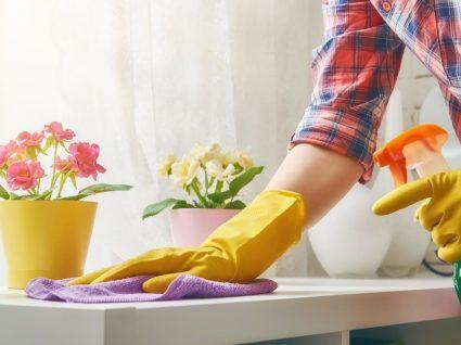 Limpeza de primavera: sabe o que precisa fazer? Siga esta checklist