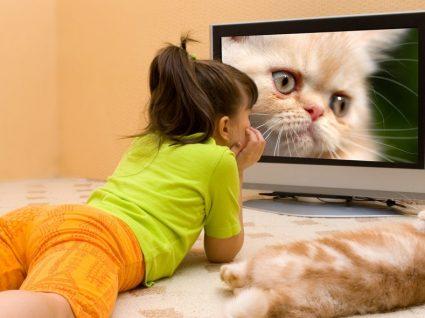 As 5 melhores TV pequenas do mercado