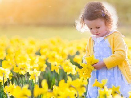 Cor da primavera: amarelo - 7 peças para menino e menina