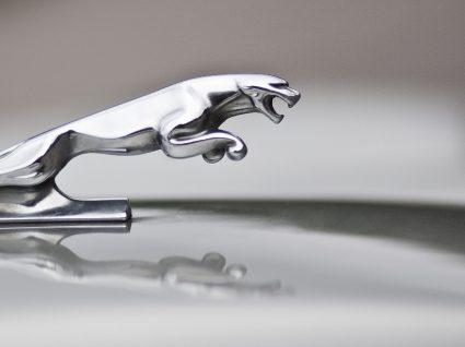Os 10 melhores Jaguar de sempre