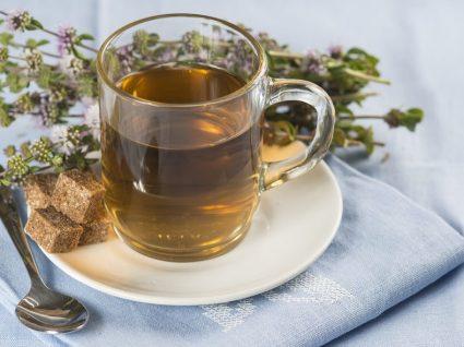 Chá de poejo: o aliado na cura das gripes e constipações