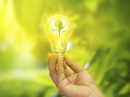 6 coisas a saber sobre o mercado liberalizado de energia