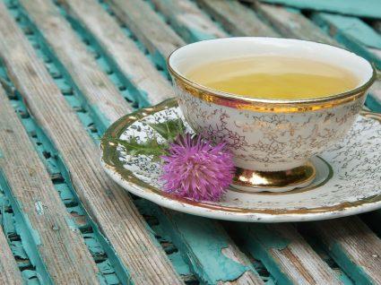 Chá de cardo mariano: conheça os seus benefícios