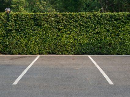 Multas de estacionamento tiram pontos?
