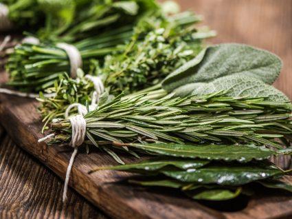 7 ervas medicinais: segredos e recomendações