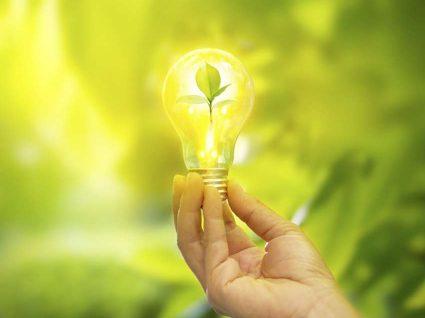 4 ideias de negócios sustentáveis