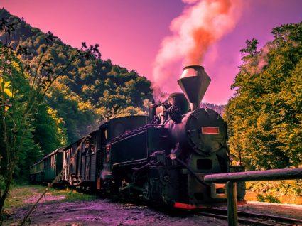 4 motivos para conhecer o comboio histórico do Douro