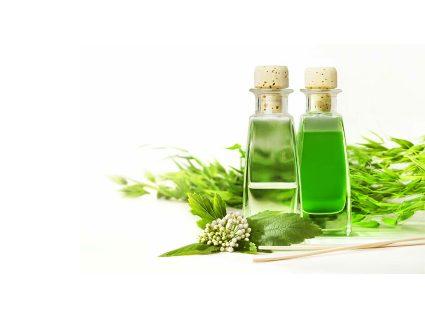8 benefícios do óleo de eucalipto