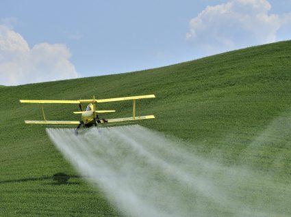 Os 12 vegetais mais contaminados por pesticidas