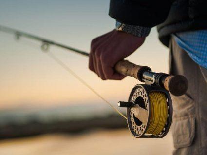 Neste restaurante pode pescar o próprio peixe: conheça o Zauo