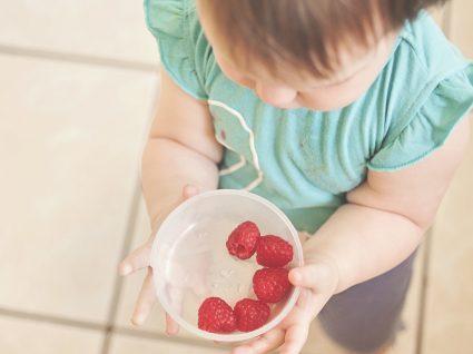 3 receitas para bebés dos 6 aos 24 meses