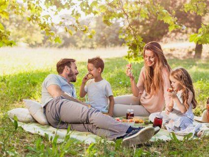 Dicas e ideias para um piquenique de primavera: viva mais o bom tempo