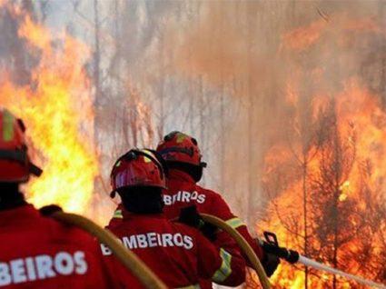 Saiba o que pode fazer para ajudar as vítimas dos incêndios