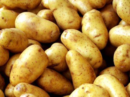 Como plantar batatas em casa