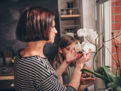 mãe e filha à janela a cuidar de uma orquídea branca