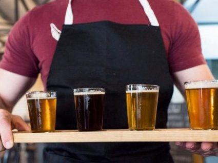 Quer ser provador de cerveja e ser pago por isso?