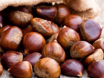 Oleiros recebe Mostra dos Frutos de Outono de 15 a 17 de dezembro