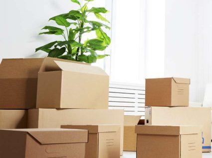 5 dicas para suavizar o processo de sair de casa dos pais
