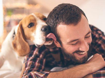 Saiba tudo sobre o seguro de responsabilidade civil para cães