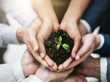 Ser mais ecológico no trabalho: 9 dicas essenciais