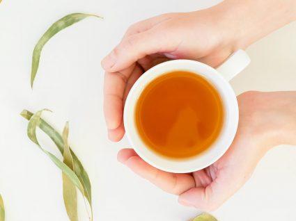 Chá de eucalipto: os benefícios e as propriedades