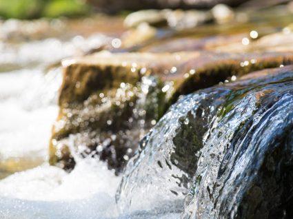 Passeio fluvial no rio Zêzere: sugestão para um fim-de-semana diferente