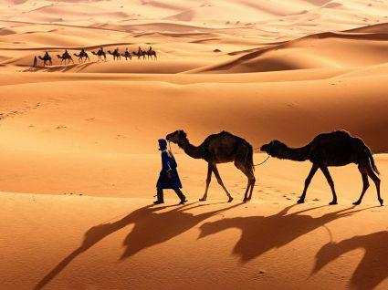 Um outro mundo aqui ao lado em Marrocos
